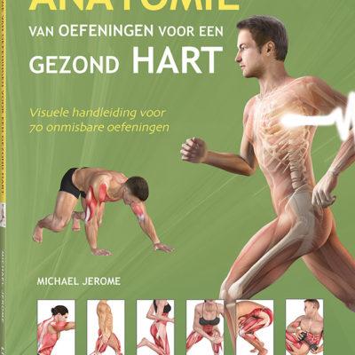 Anatomie van oefeningen voor een gezond hart